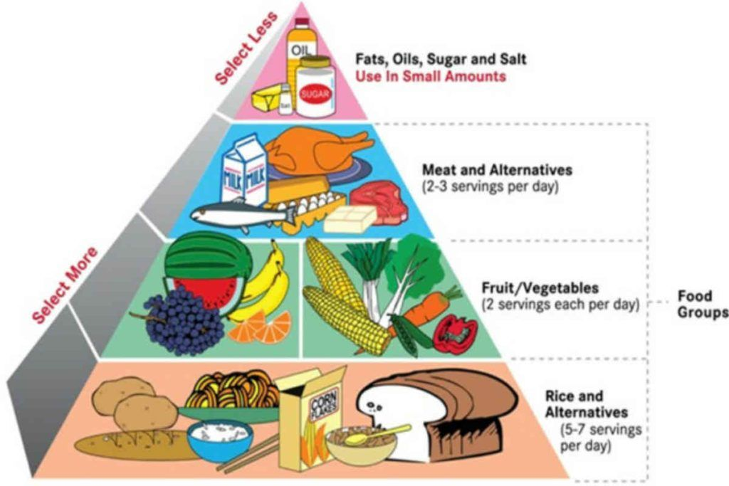 Healthy foods  are beneficial for kids